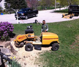 tree service ri stump grinding